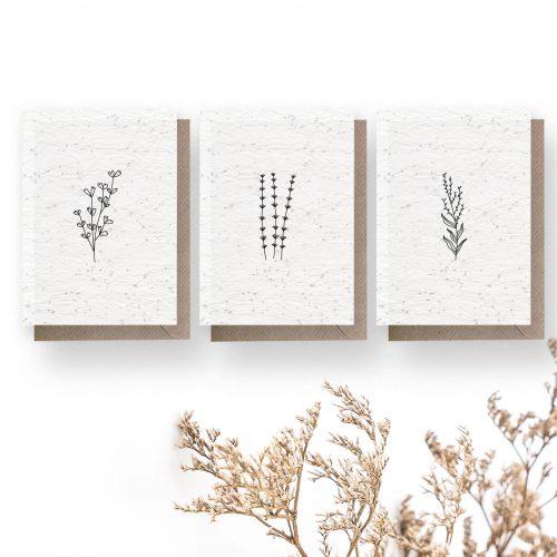 triptyque de mini cartes à planter - fleurs sauvages
